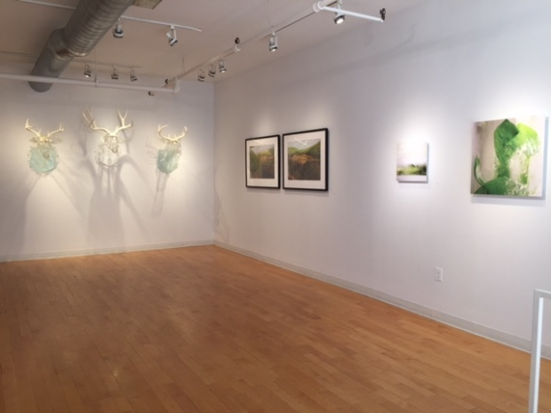Installation view, All Natural, Kingston Gallery, September 2015. L-R art by Christina Pitsch, Mary Lang, & Kathleen Gerdon Archer.