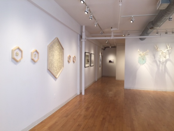 Installation View, All Natural, Kingston Gallery, Sept. 2015. L-R Greg Lookerse, Mary Lang, Christina Pitsch.