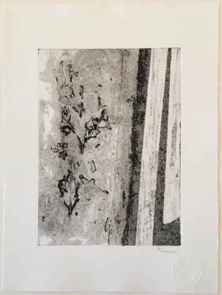 LEWitkowski_No.11_30x22_Archival Monoprint